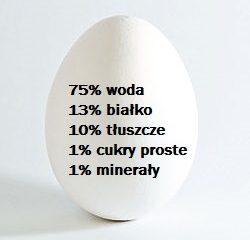 jajko skład