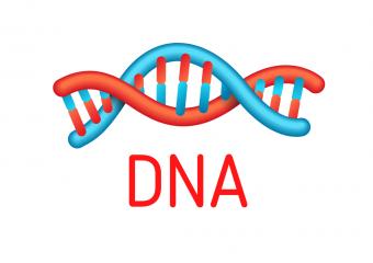 testy nutrigenetyczne dieta DNA